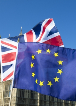Always look on the dark side of life: How Britain got the EU wrong